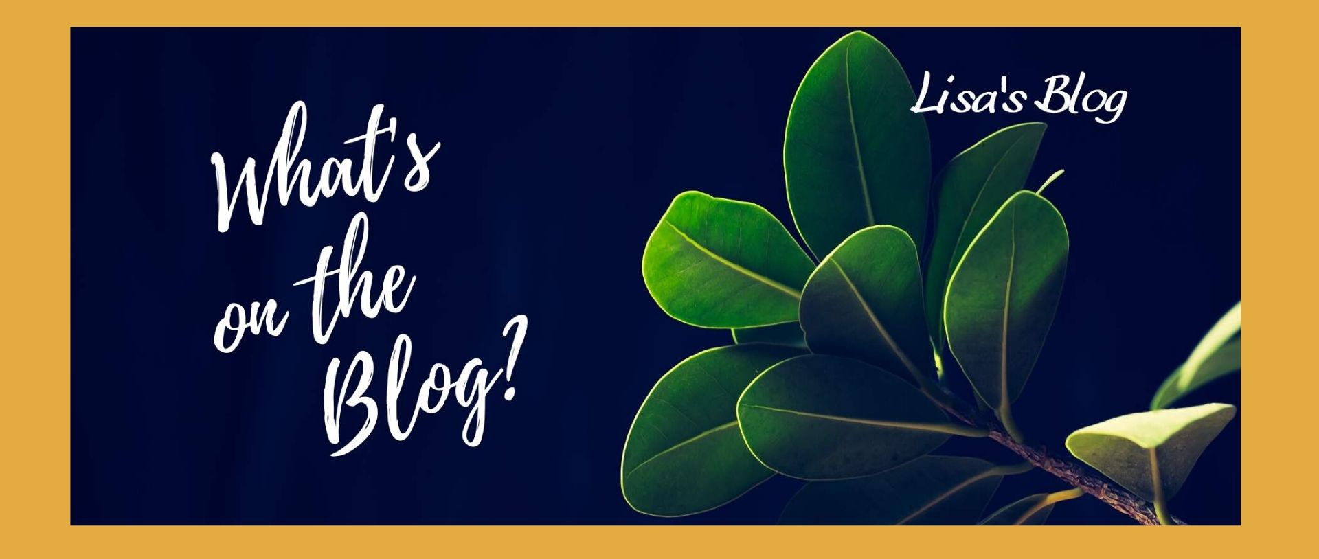 What's on the blog Lis'a blog hero 1