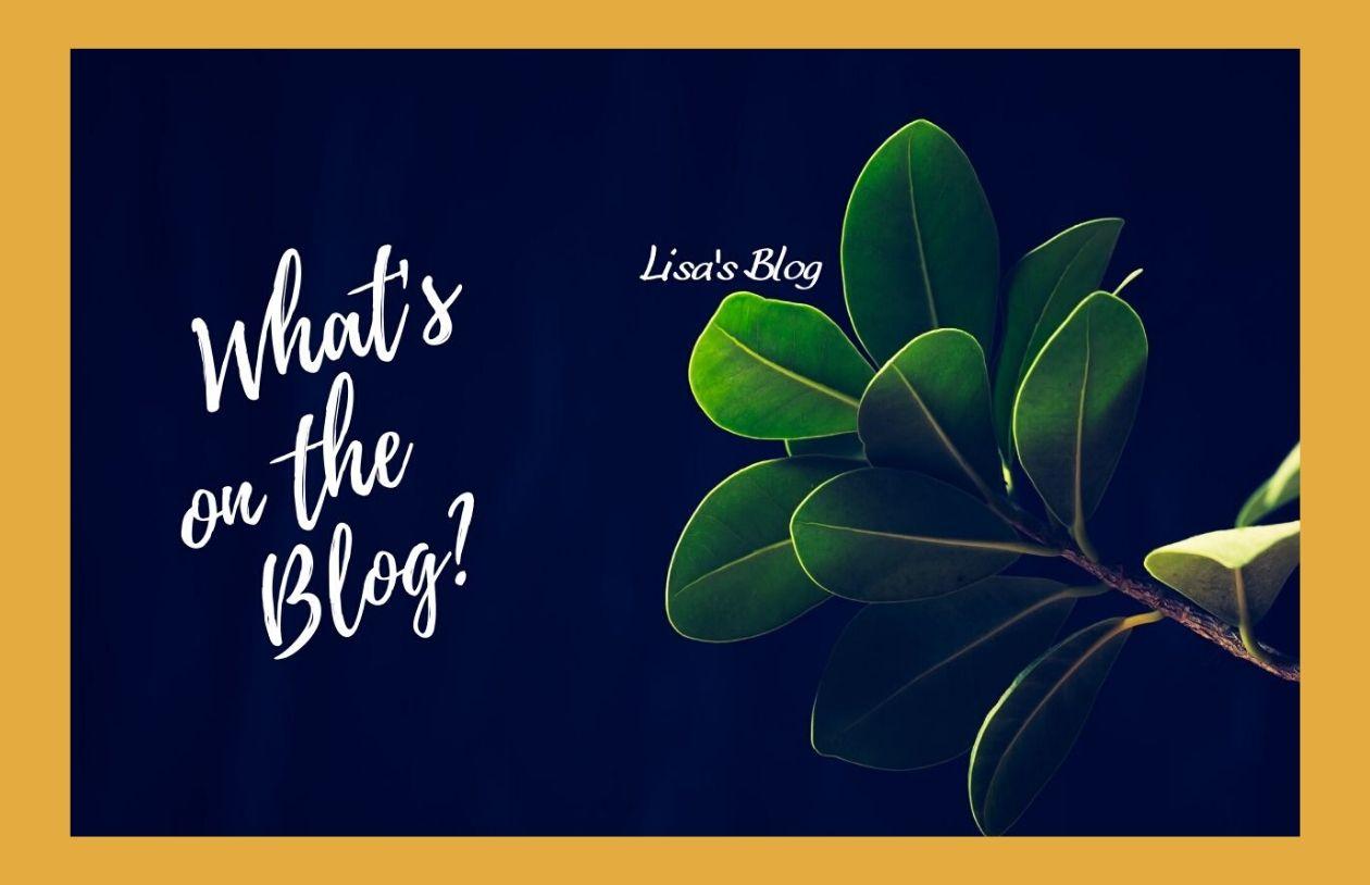 what's on the blog Lisa's blog hero 2